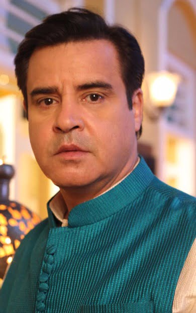 Akshay Anand's track in Saam Daam Dand Bhed comes to an end