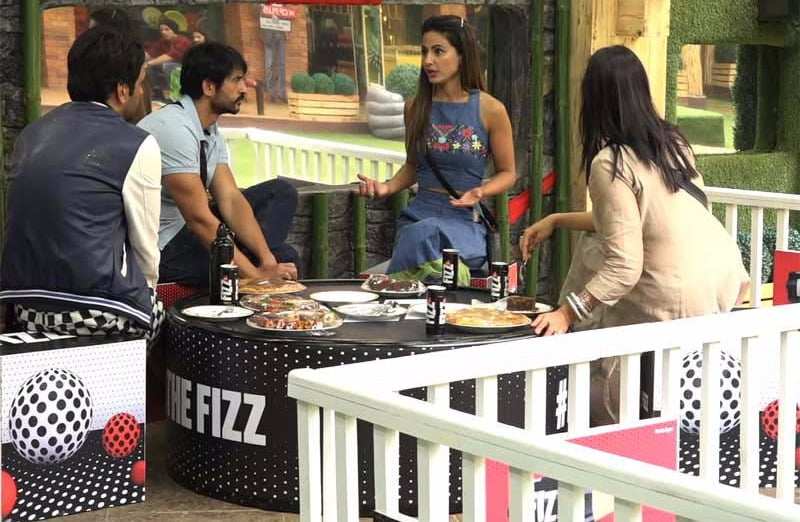 Bigg Boss 11: Synopsis Day 37 - Hence Proven: Vikas is the True Mastermind!