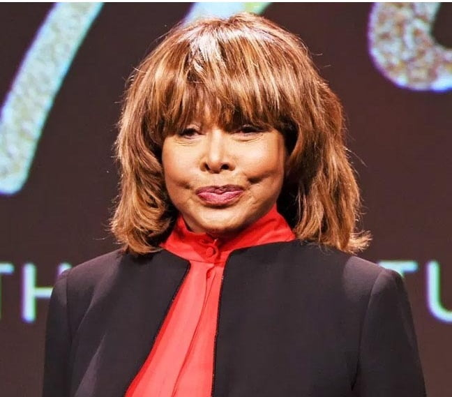 Tina Turner's eldest son commits suicide