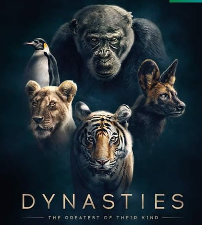 Feel Alive with the most intense stories in Dynasties first look
