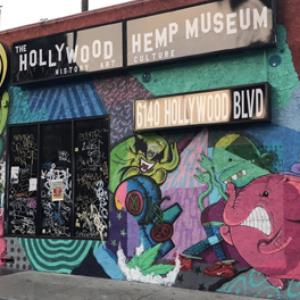 Fire at Hollywood Hemp Museum, no one injured
