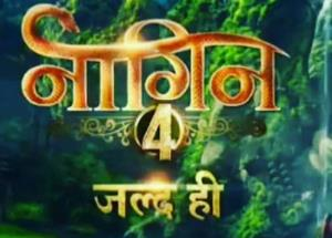 Naagin 4: Ekta Kapoor gives the glimpse of her two Naagins