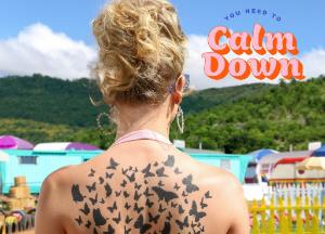 Song lyrics You Need to Calm Down of Taylor Swift