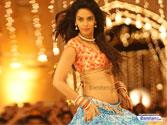 Mallika Sherawat: I want to be an independent woman