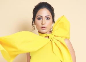 Why Hina Khan doesn't want to stick to television or films?