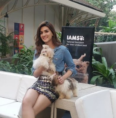 Kriti Sanon: Social media is the most toxic place