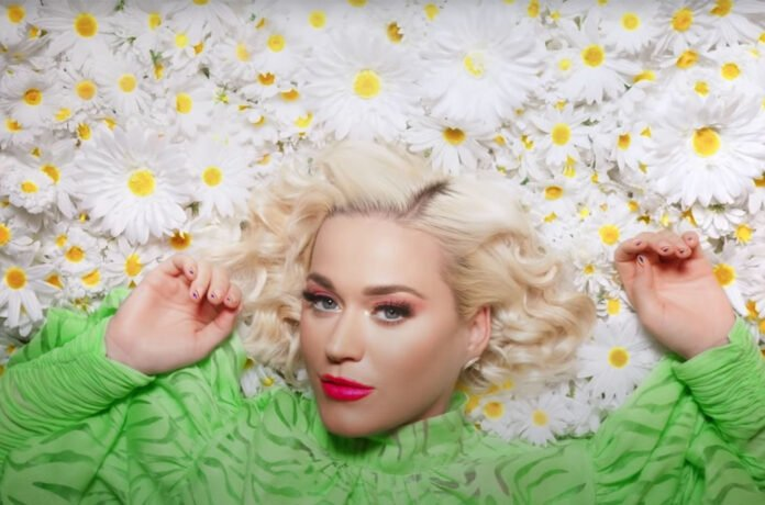 Katy Perry 'Daisies' (Can't Cancel Pride) Song Lyrics