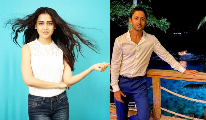 Tejasswi Prakash and Shaheer Sheikh to be seen romancing in a music video
