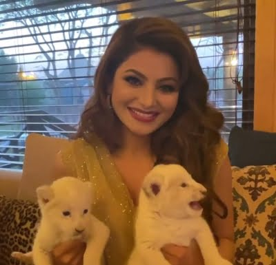 Urvashi Rautela has lioness cub named after her