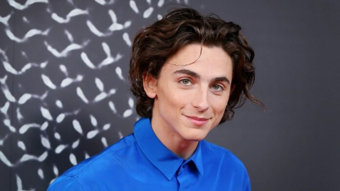 Timothee Chalamet admits feeling 'embarrassed' over viral kissing photos with Lily-Rose Depp