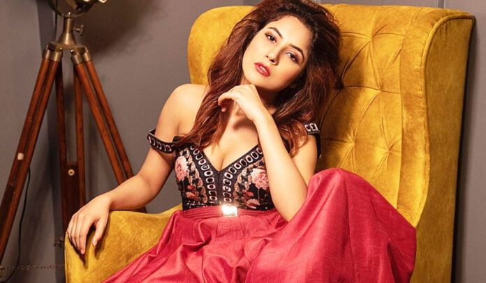 Shehnaaz Gill looks glamorous in red outfit