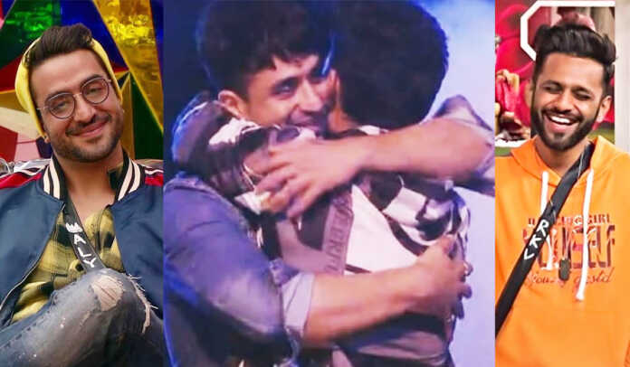 Bigg Boss 14: Who else loves the bromance between Aly Goni and Rahul Vaidya?