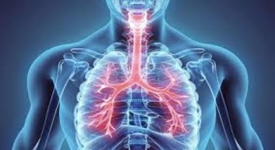 Asthmatics no higher risk of dying from Covid: Study