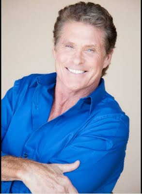 David Hasselhoff to star as himself in German TV show