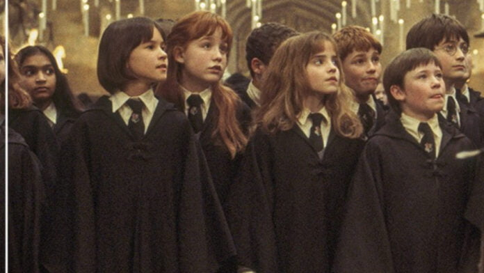 Would Daniel Radcliffe reunite with 'Harry Potter' co-stars on 20th anniversary