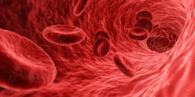 Novel autoantibody sparks inflammation, blood clots in Covid patients