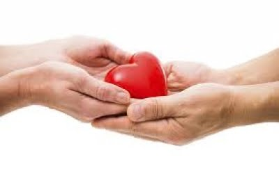 Organ donation dropped significantly due to Covid: Experts