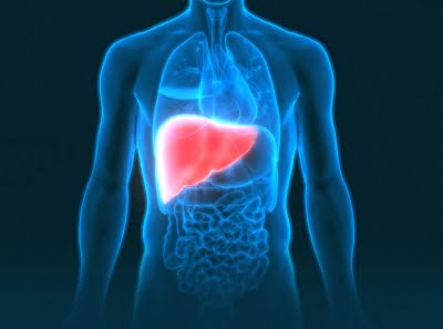 Some liver transplant recipients not at risk of Covid death: Study