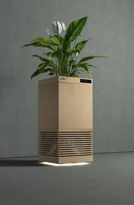 Indian scientists develop plant-based air purifier